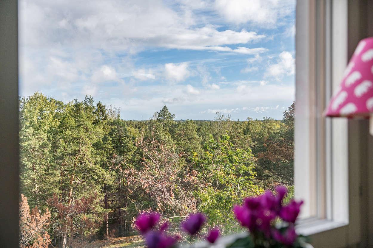 Utsikten från kök och vardagsrum