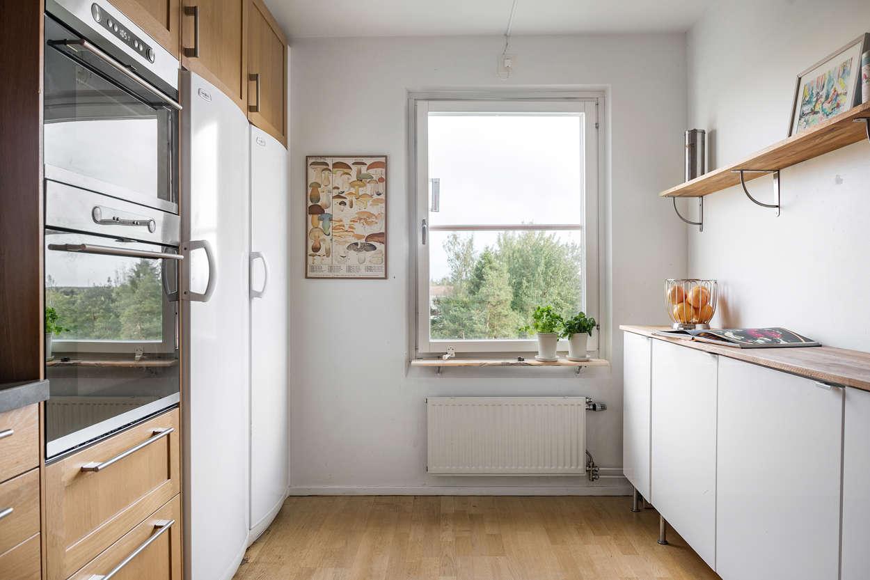 Köket med grön fin utsikt