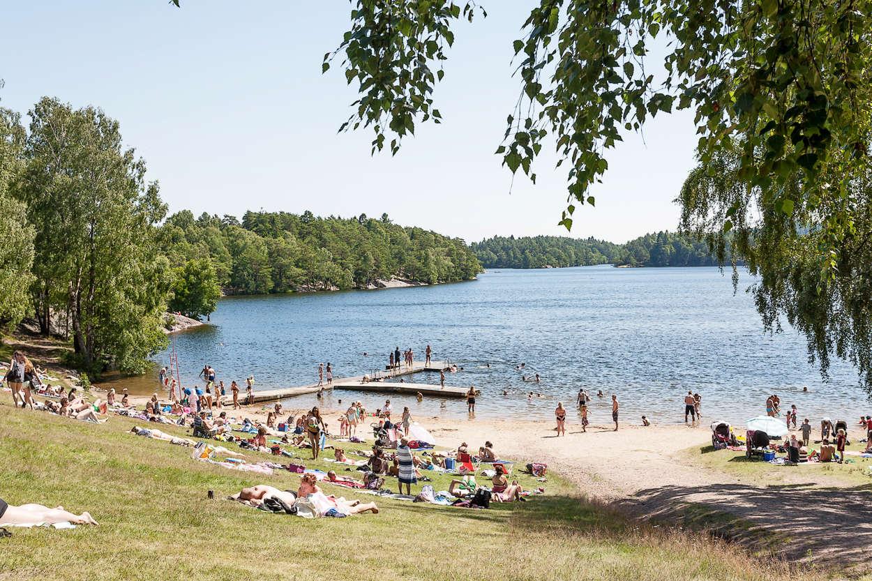 Sköna bad och vackra motionsspår i Delsjön