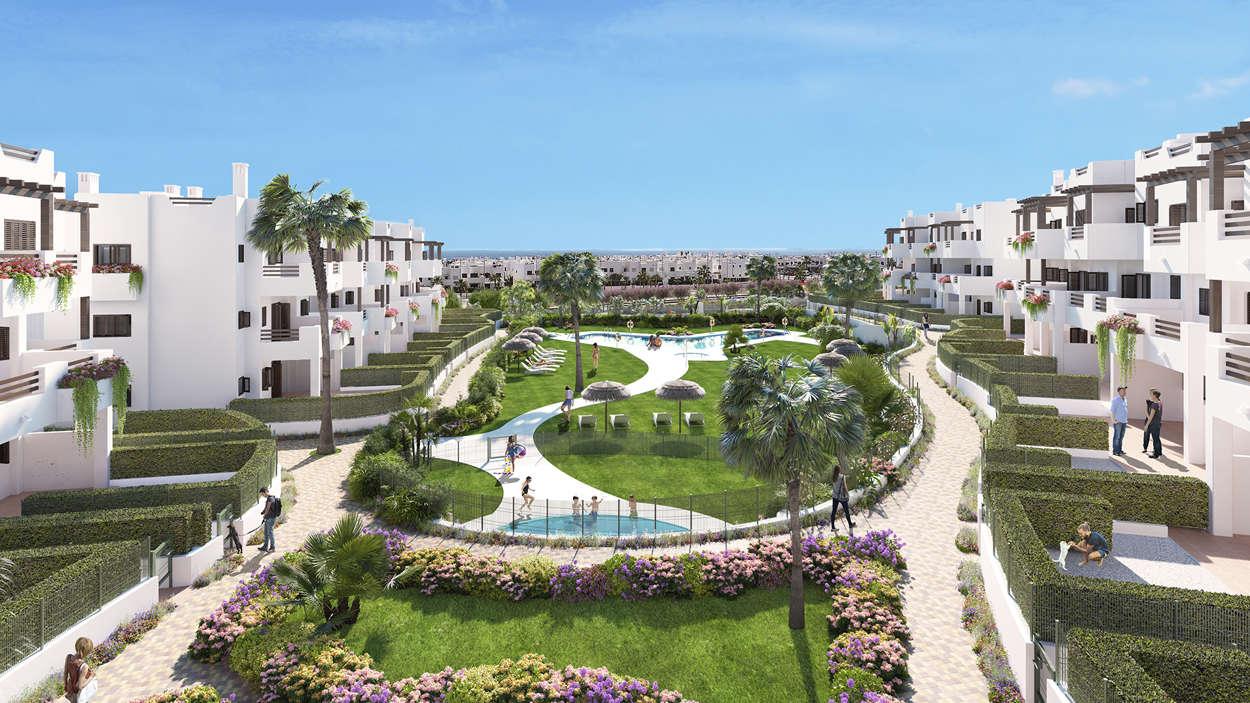 Översikt gemensamma pool och trädgårds området