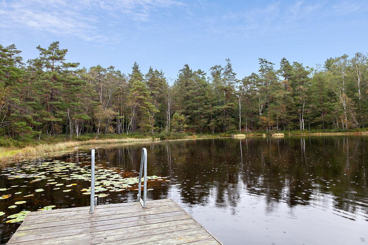 Badplats vid sjön Horssöcket